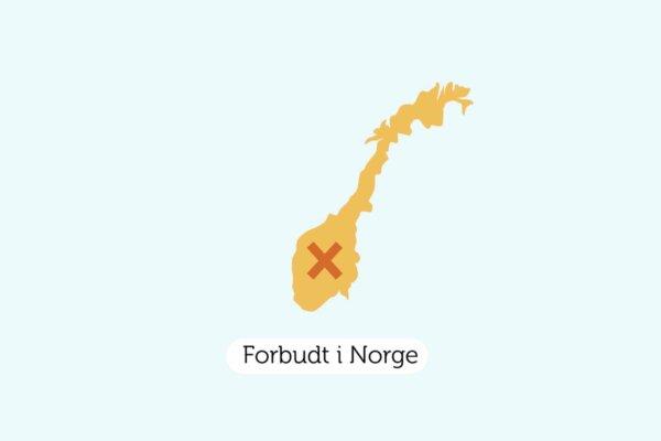 Avfall Norge Animert Forklaringsvideo Storisell 2D Norge
